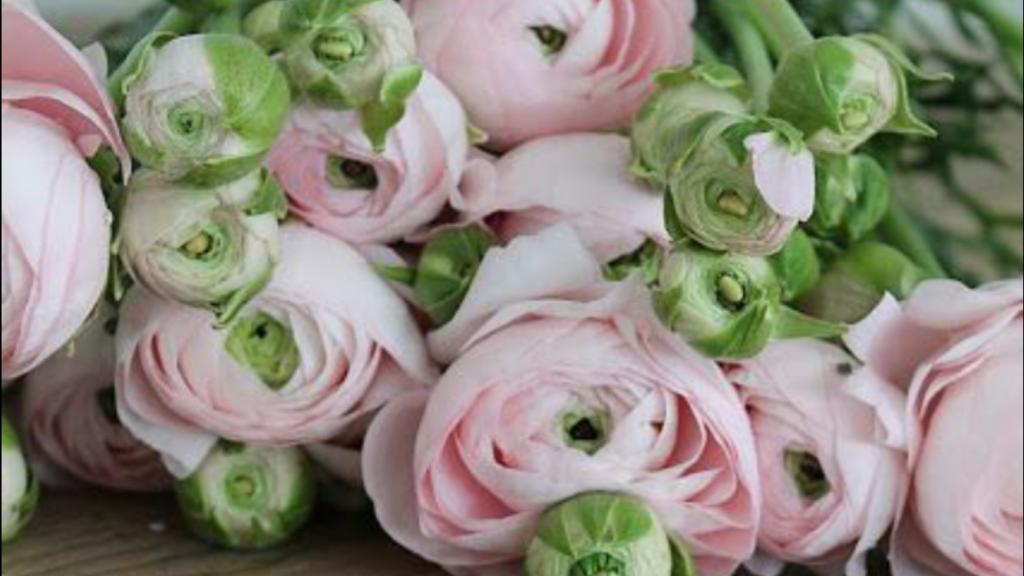 bloemen bezorgen amersfoort